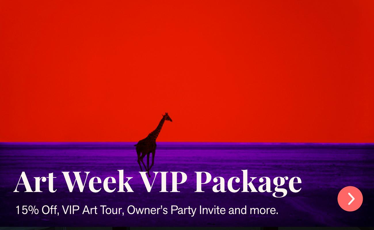 Art Week VIP Package